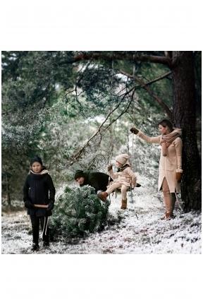 Šeimos pasaka Kalėdos '19